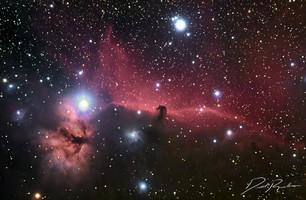 Horsehead nebula by Rankin